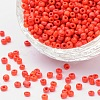Glass Seed Beads SEED-A010-3mm-45-1