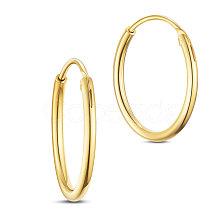 SHEGRACE 925 Sterling Silver Hoop Earrings JE670B-01