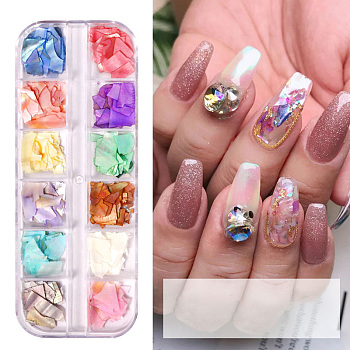 Shell Slices, Manicure Nail Art Decoration Accessories, Mixed Color, 12colors/box