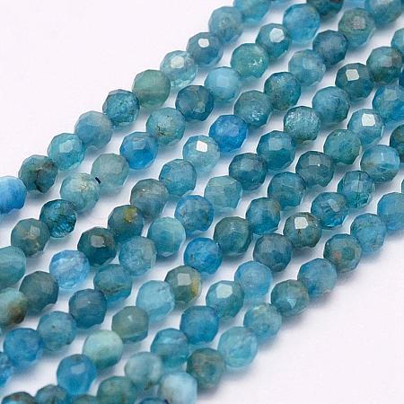 Natural Apatite Beads StrandsG-F509-17-2mm-1