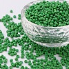 Glass Seed BeadsSEED-A010-3mm-47-1